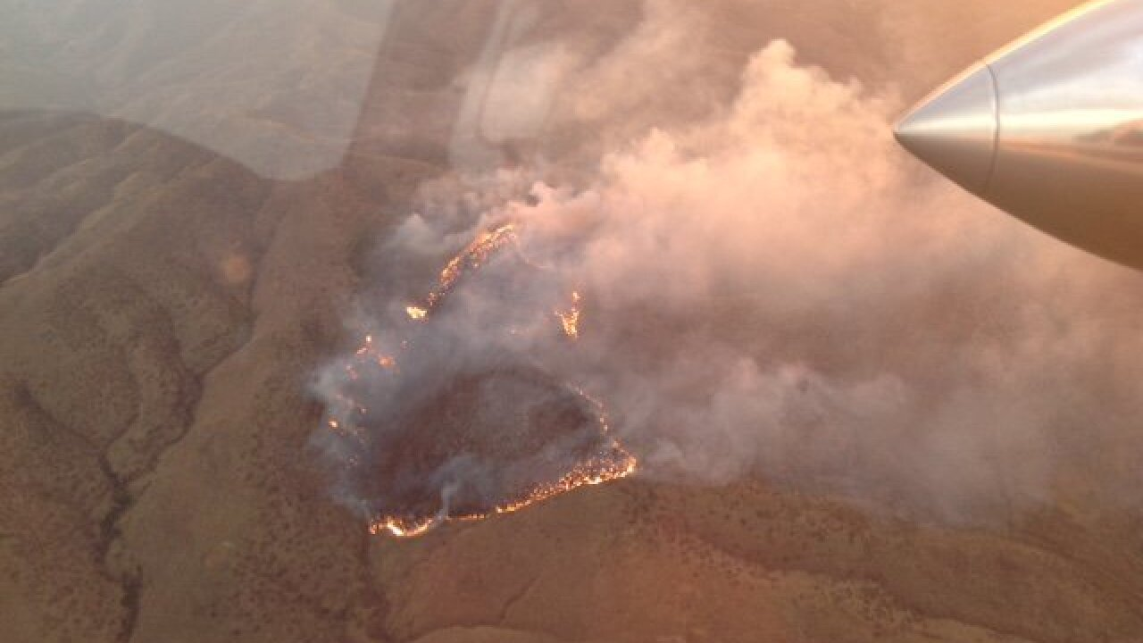 Wildfire burns in Cochise County