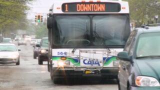 cata+bus.jpg
