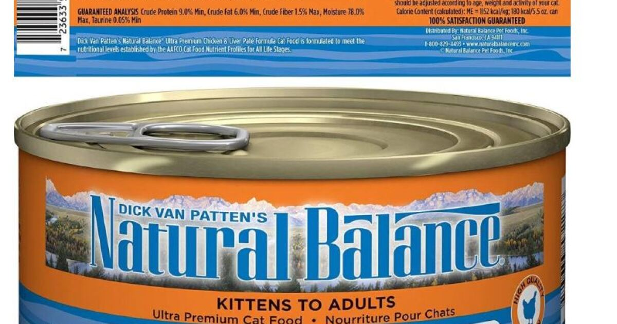 Recalled cat food can make a cat very sick
