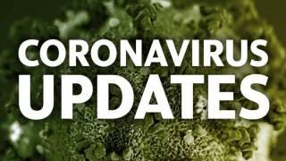 covid update 11-14-2020.jpg