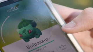 Driver playing 'Pokemon Go' hits parked cruiser