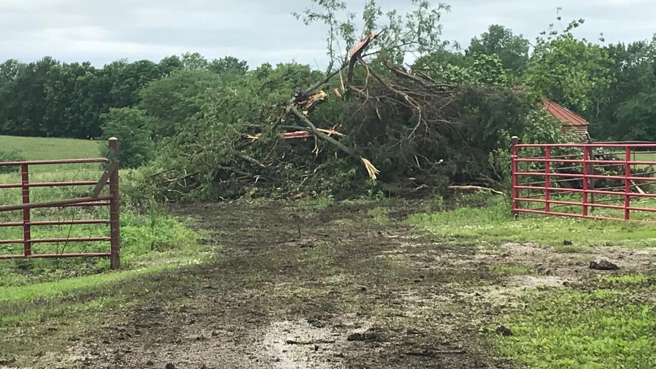 Clay county tornado 8.jpg