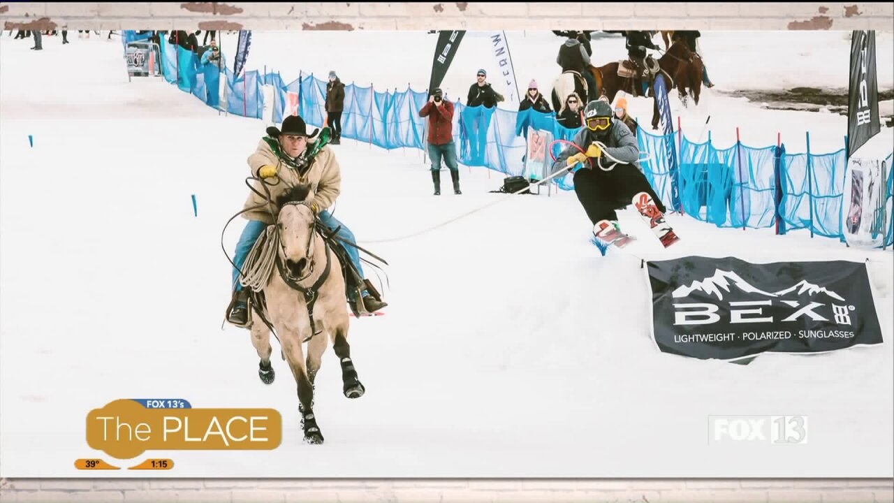 What is Skijoring, and Where You Can Watch itIn-Person