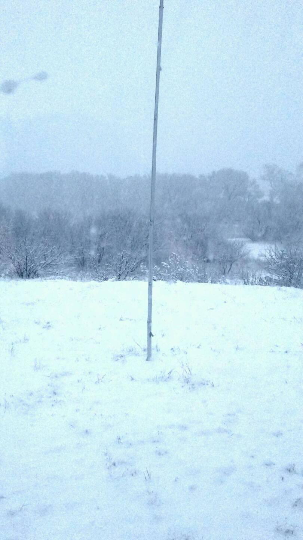 Snow in Rio Rico (2).jpg