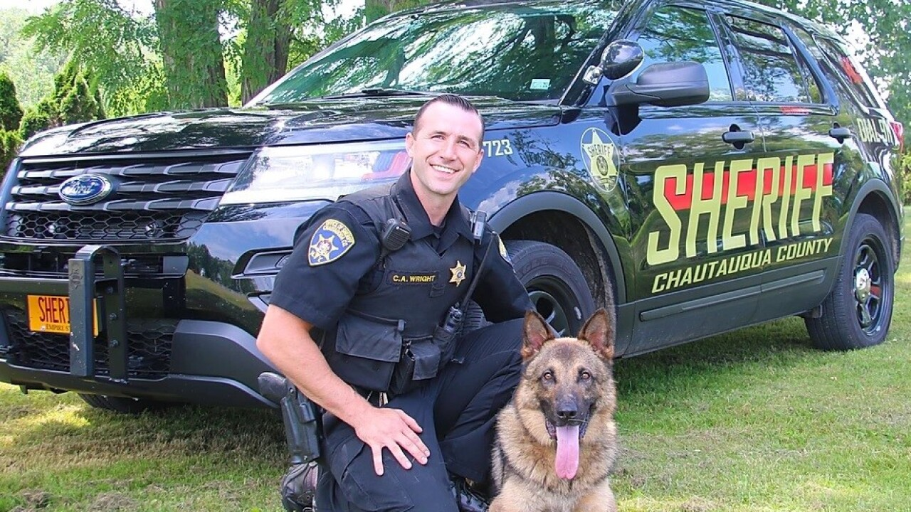 K-9 deputy tracks stabbing suspect to barn a mile from crime scene