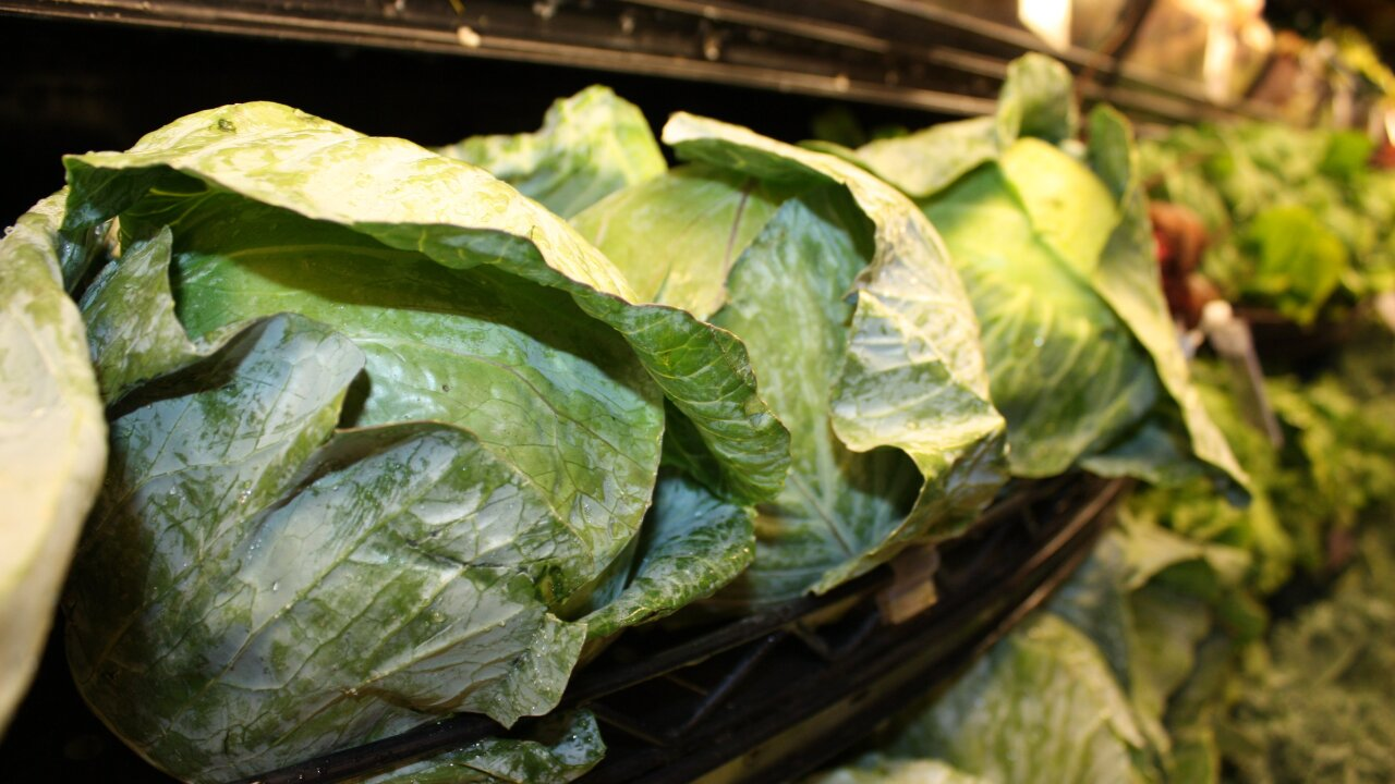 Lettuce, livers, berries and other leading sources of food poisoning