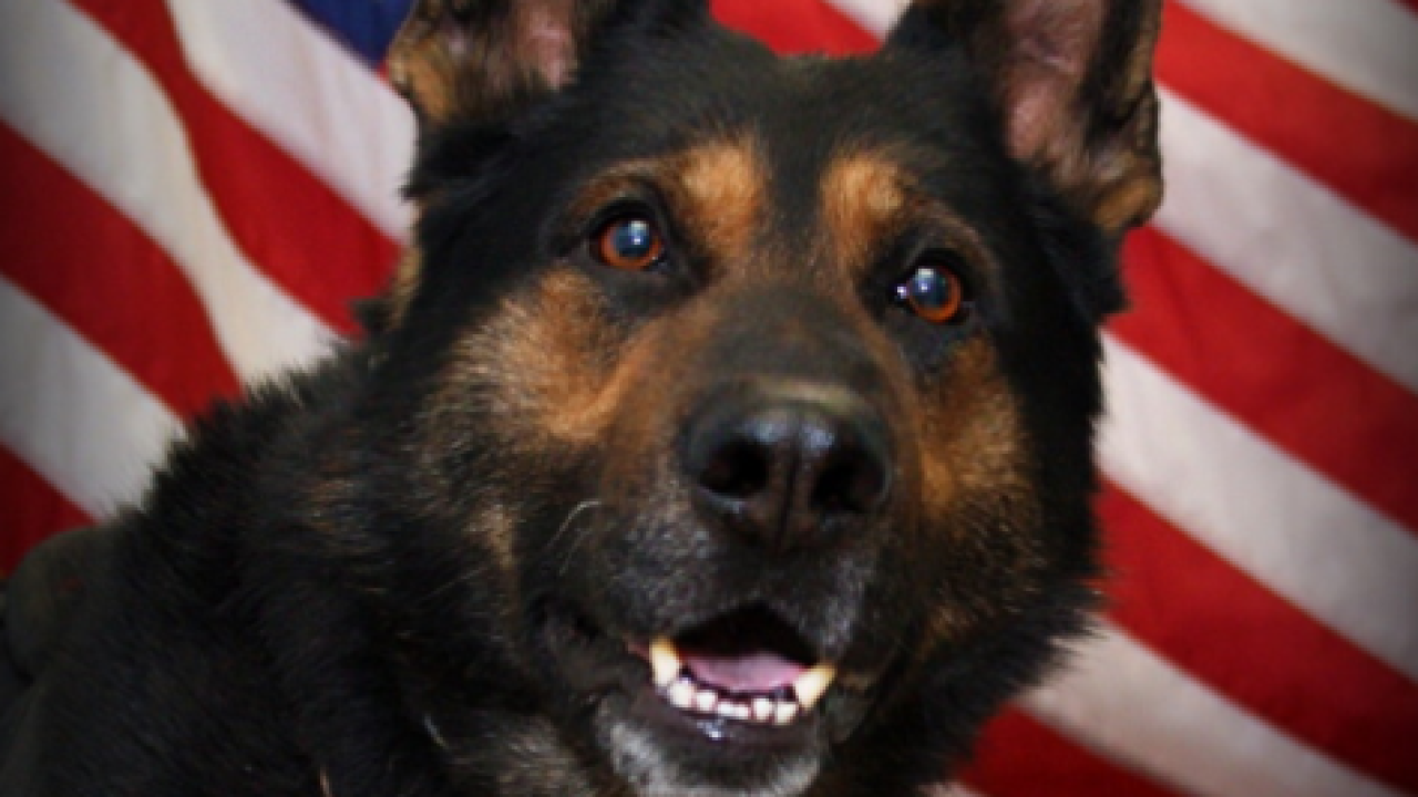 Jefferson County K9 laid to rest