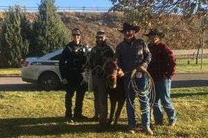 Jason, Dusty and Kody of Seventysix Ranch pose with GFPD and the pony they caught.