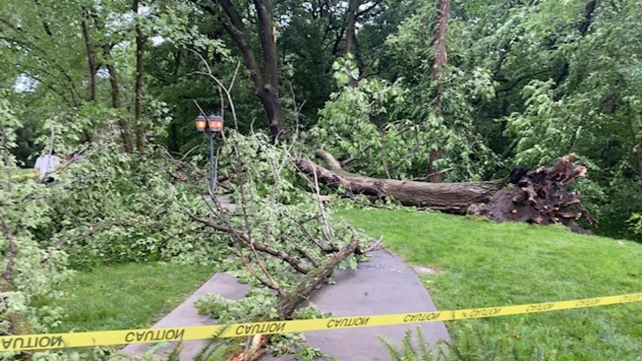 Excelsior Springs storm damage