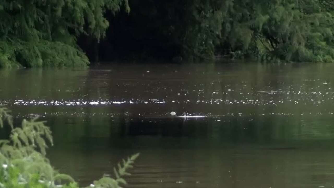 High water halts boat traffic on Bayou Vermilion