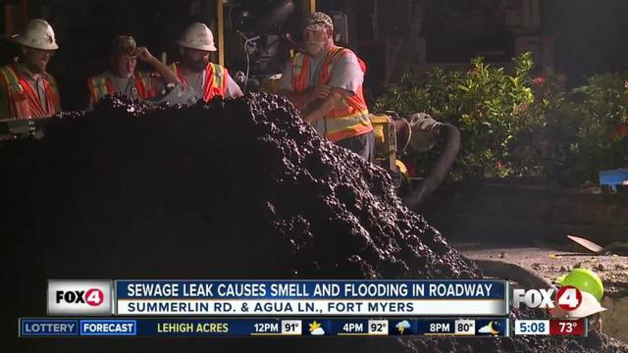 Crews working to repair sewage leak