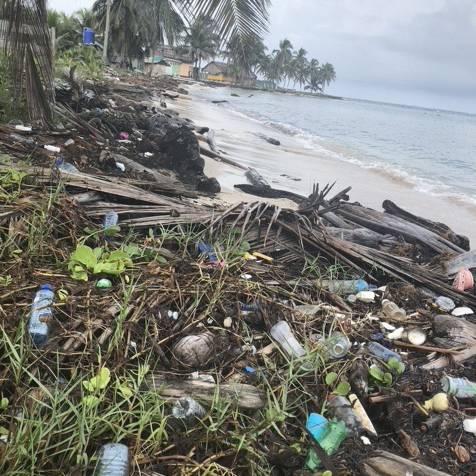 Trash along the ocean, taken during CEO Lindsey McCoy's research trip