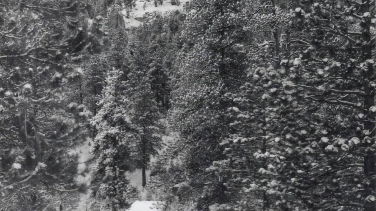 MT CHARLESTON LODGE 2 1940S  &50S.jpg