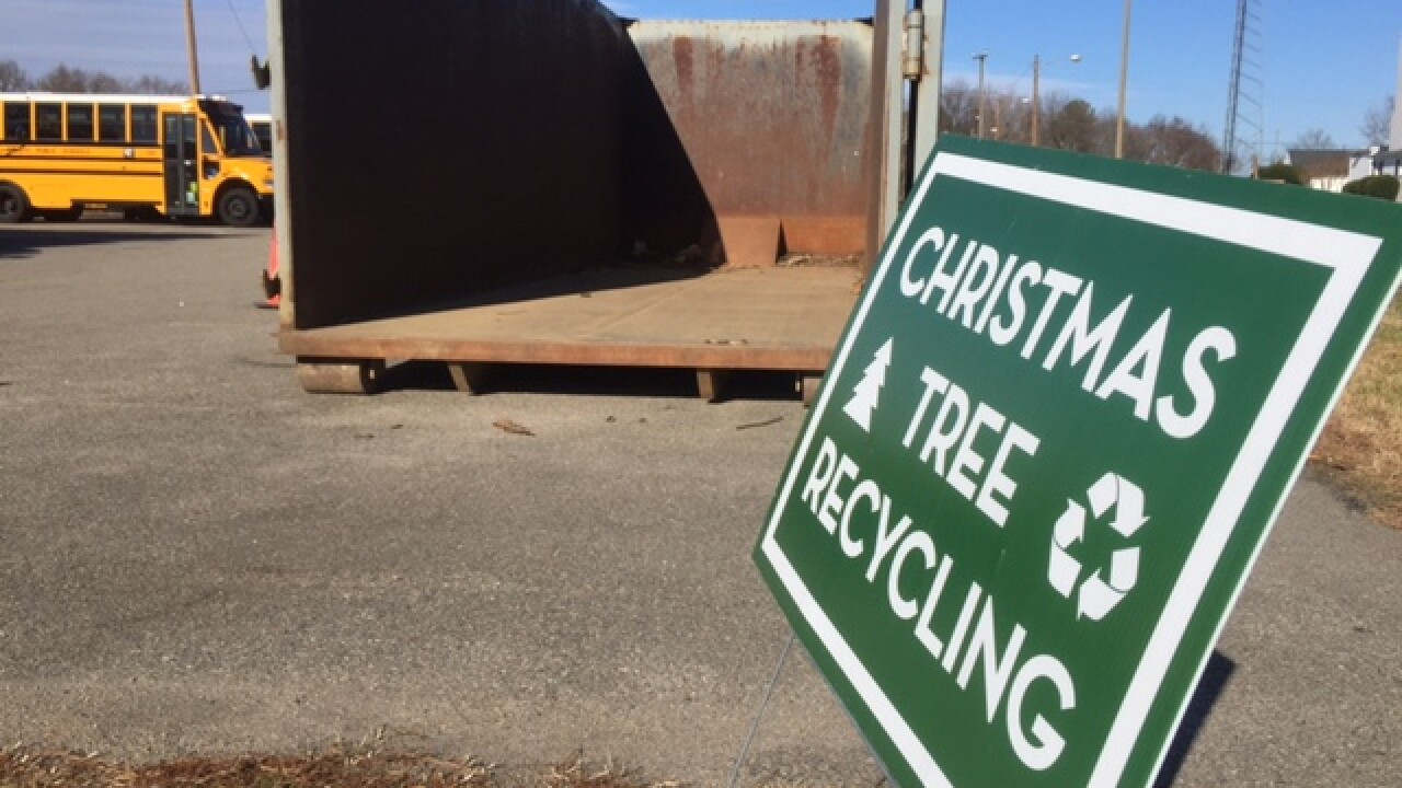 Where to take your Christmas tree for recycling