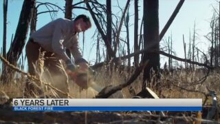 Man's win in contest helping clear damage from Black Forest Fire