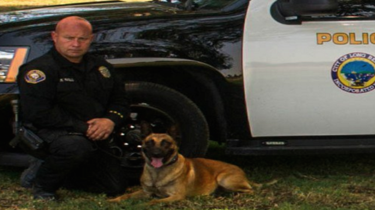 Calif. police K-9 killed in line of duty