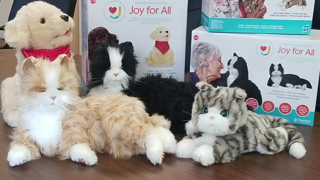 Lots of love, and no mess: Helena council giving robotic pets to seniors in need