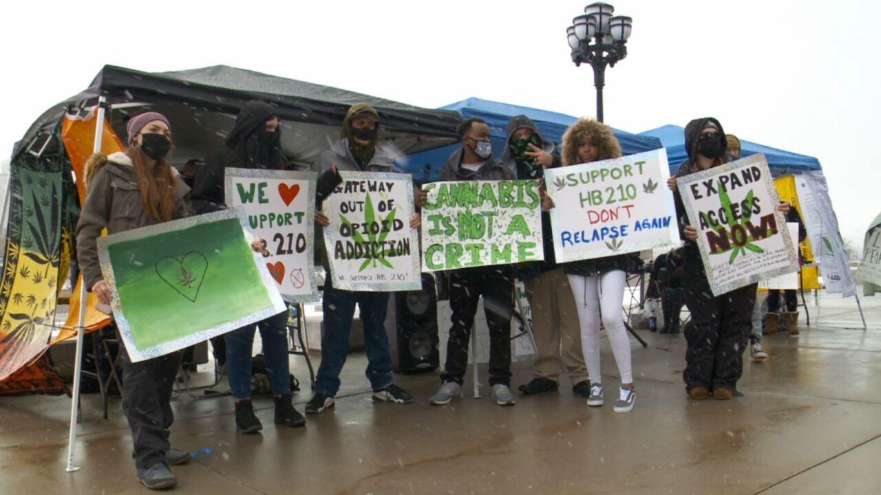 medical marijuana cannabis weed pot (3).JPG