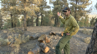 Staying Safe in burn areas