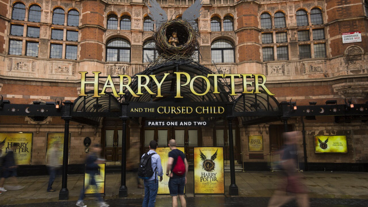 Harry Potter play cuts owls after one flies away