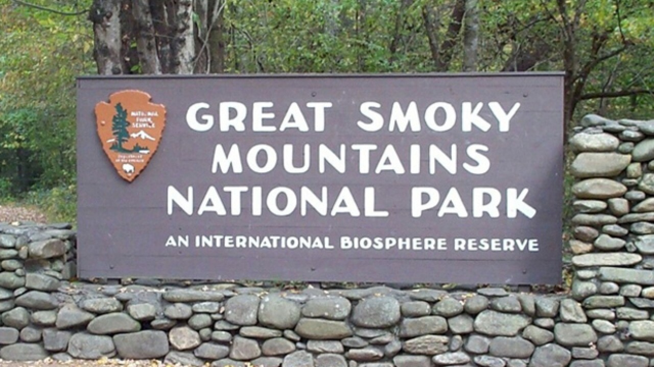 Great Smoky Mountains National Park To Assess Storm Impact