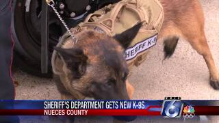 New sheriff's K-9s 0212.jpg