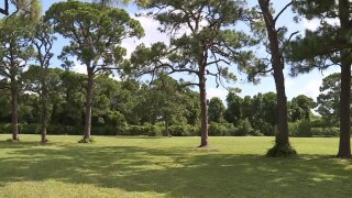 Site-of-proposed-golf-course-Fort-Pierce.jpg