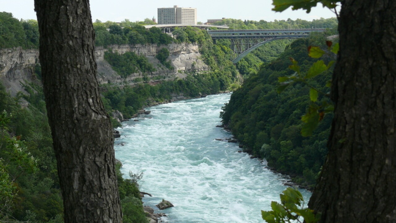 WNY Land Conservatory to restore Niagara Gorge
