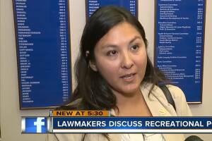 FL lawmakers discuss recreational pot