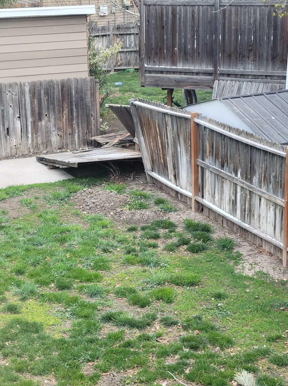 Wind Damage, April 14, 2021 (1).jpg