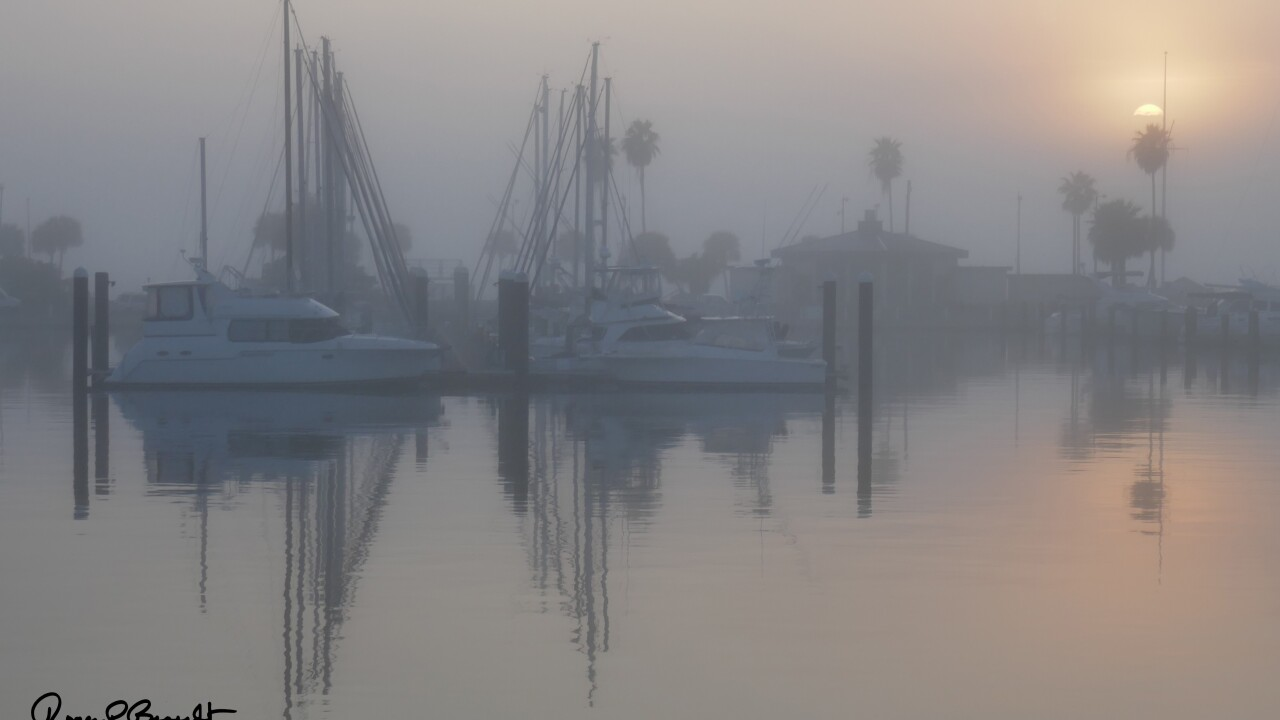 Foggy conditions expected