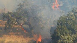 McMurray Fire.jpg