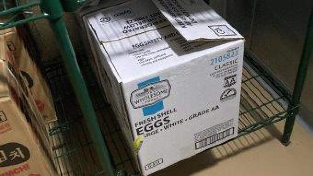 22. 2 egg cases.jpg