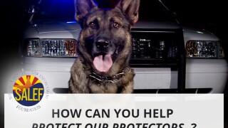 The Southern Arizona Law Enforcement Foundation (SALEF)