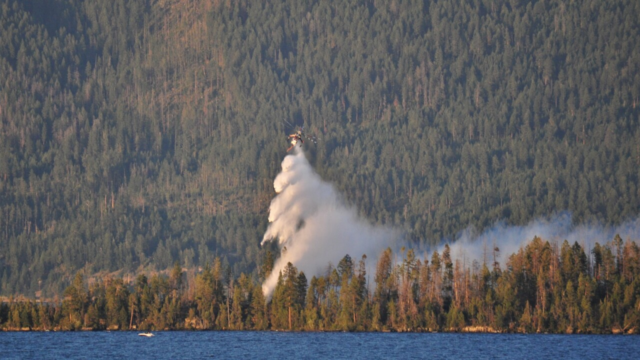 """Cause of Bird Island wildfire """"inconclusive"""""""