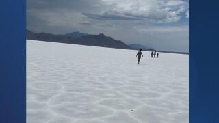 Walks on the Salt Flats.jpg