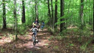 Wilson family bike riding.jpeg