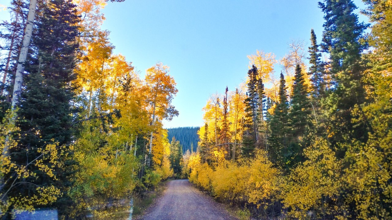 Gooseberry Canyon Central Utah Cris Draper.jpg