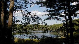 Reid Lake Foot Travel Area