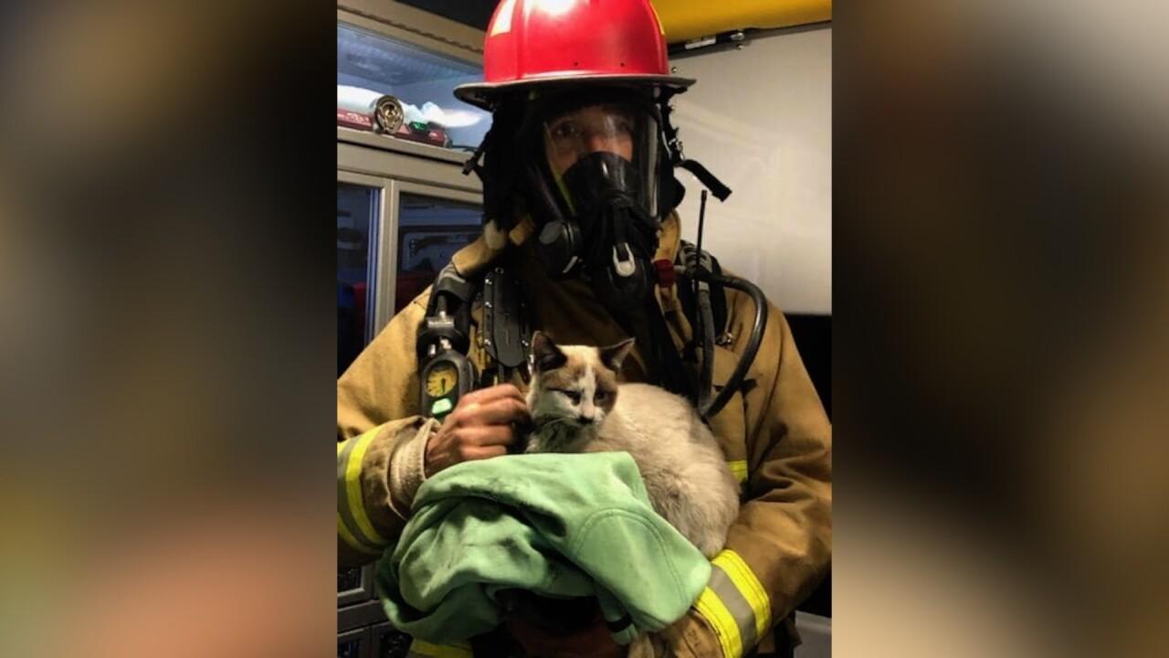 Pets saved in Ennis house fire.jpg