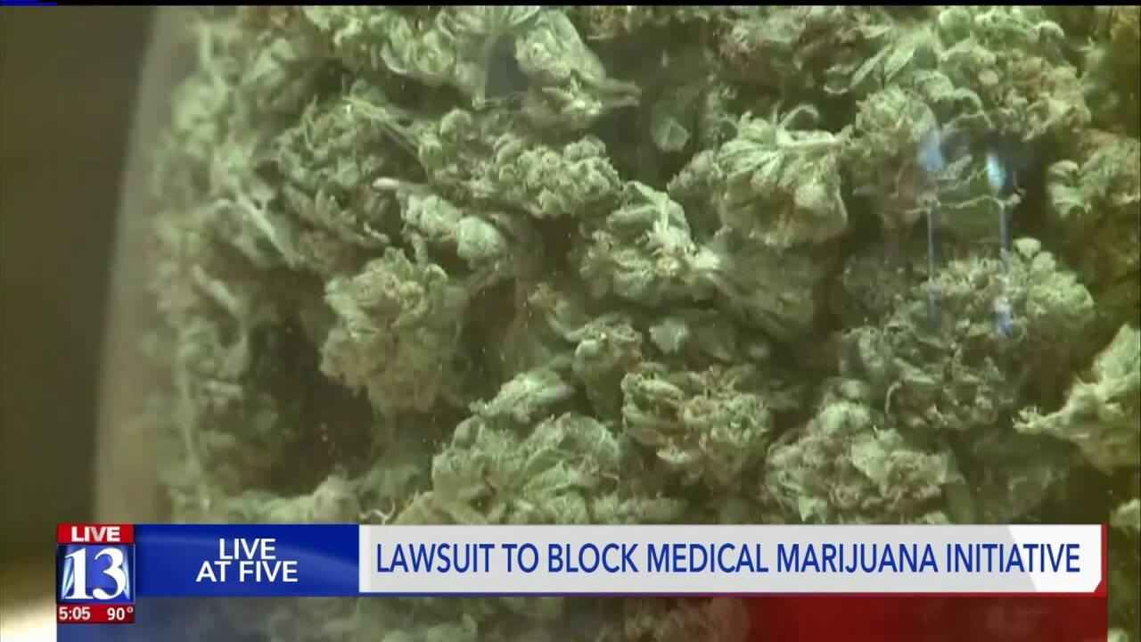 Medical marijuana opponents will ask a judge for a restraining order to keep it off theballot