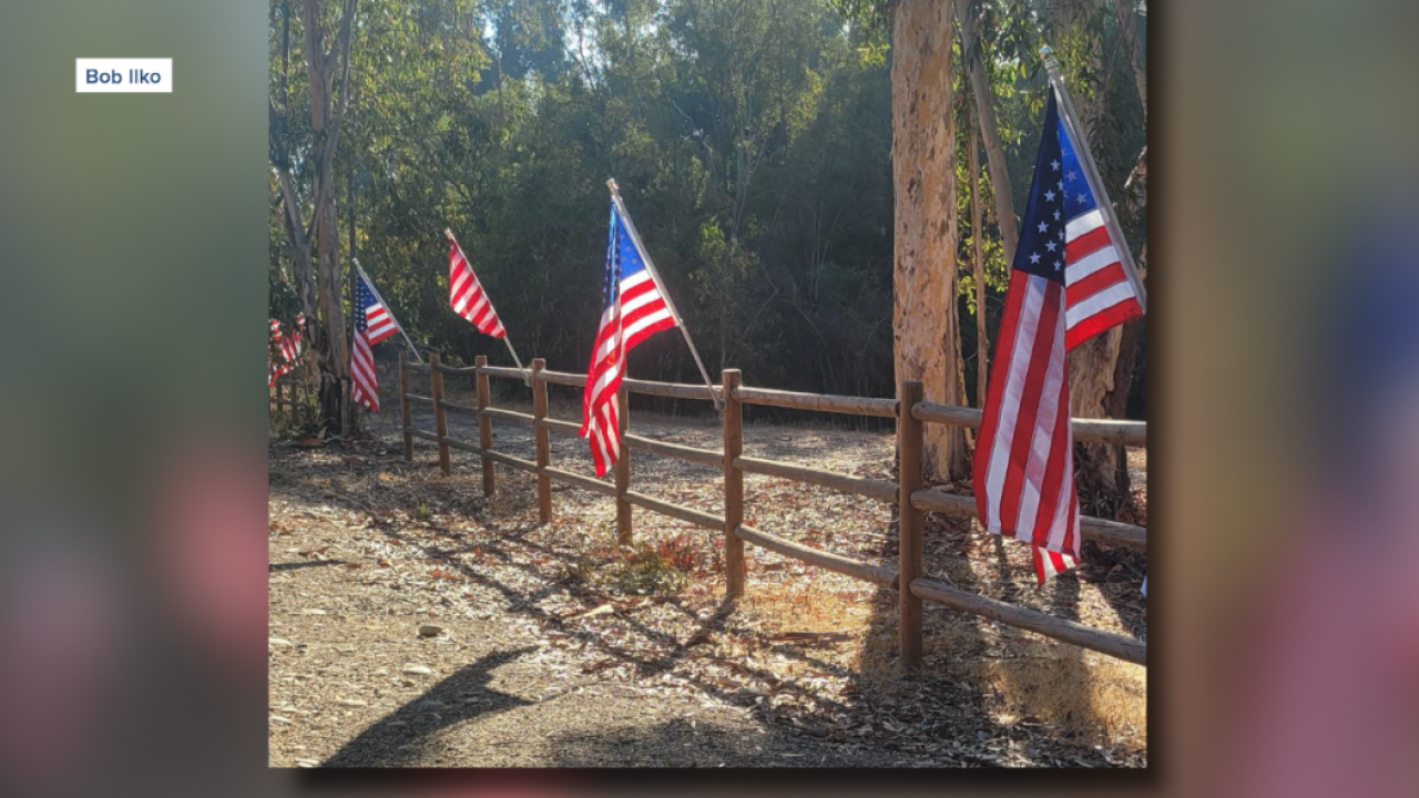 Scripps Ranch American flags.png