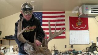 Montana Ag Network: Veteran reflects on fallen comrades and seeks peace through taxidermy