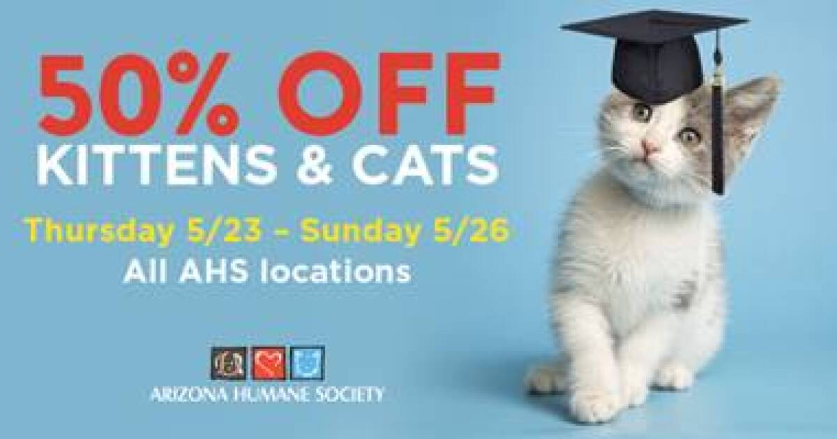 50% off cat and kitten adoptions this weekend at AHS