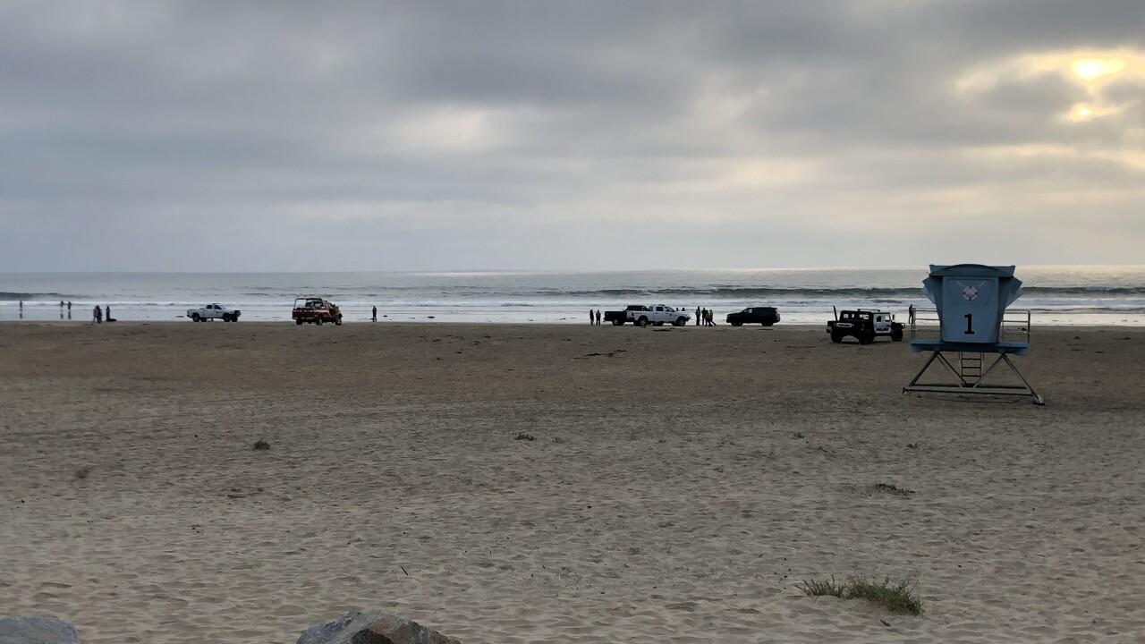 BODY FOUND BEACH.JPG