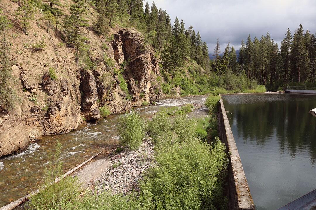 Rattlesnake Creek Conservation