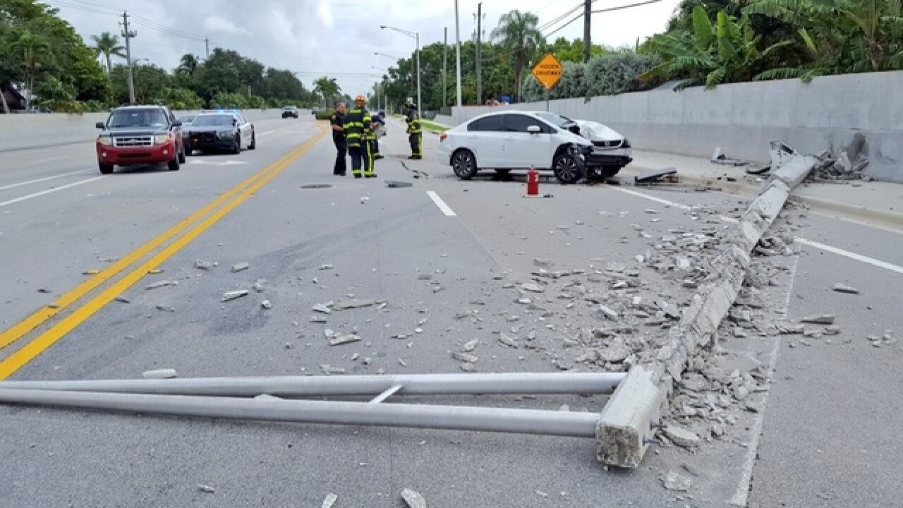 Spider blamed for Florida car crash