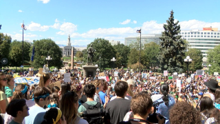 global climate strike_denver.png