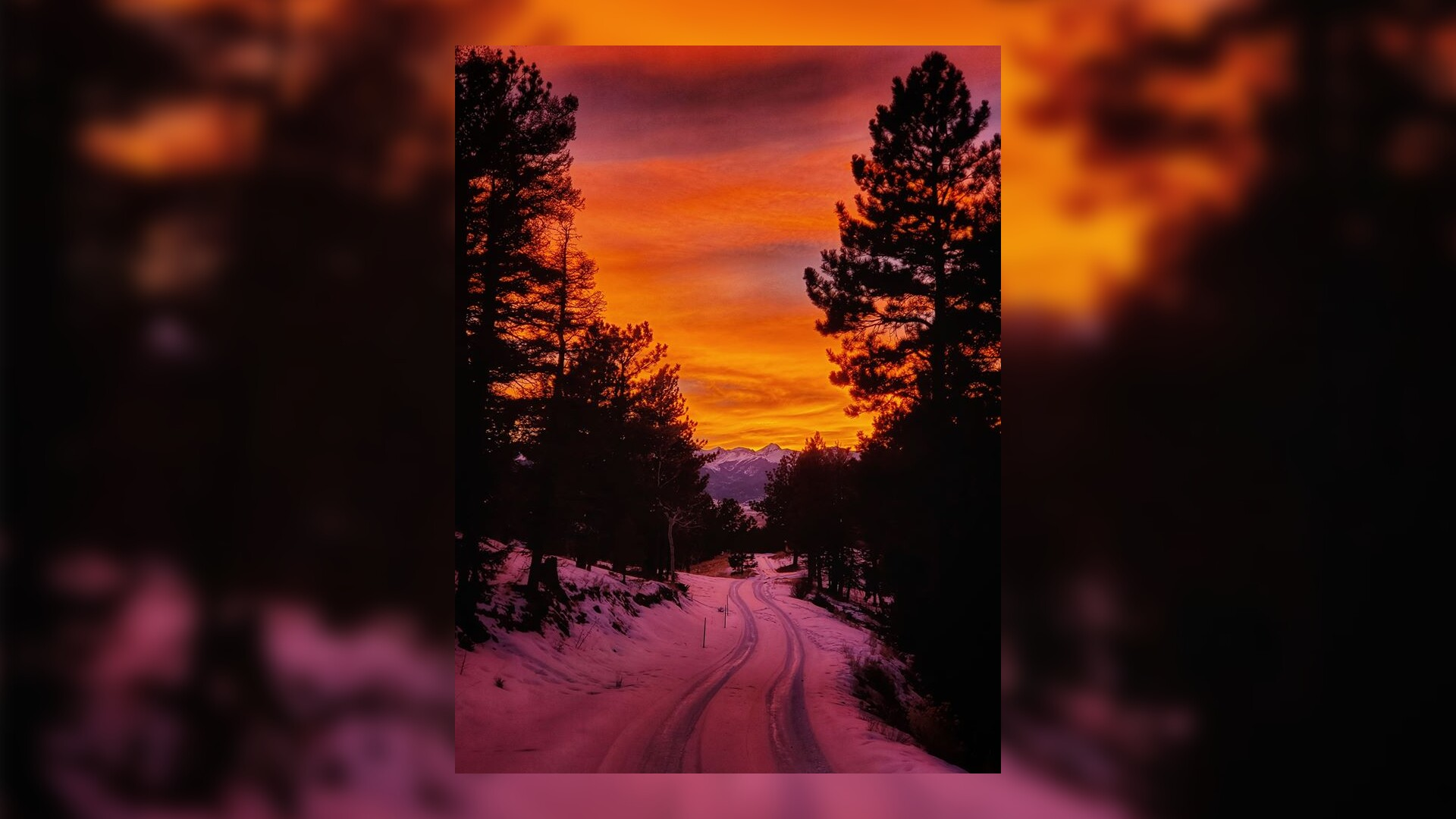 Westcliffe Sunset Dena Smith Woods.jpg