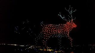 Walmart Drone Show Reindeer (handout)